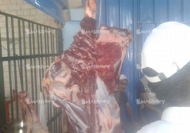 التموين تعلن أسعار اللحوم والدواجن خلال عيد الأضحى