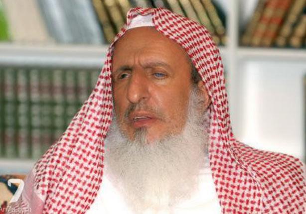 """مفتي السعودية آل الشيخ: الإيرانيون """"ليسوا مسلمين"""""""