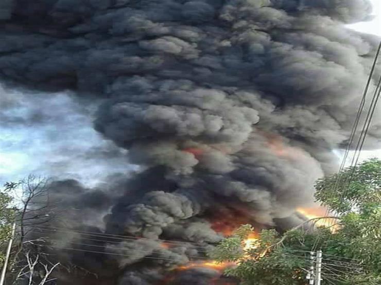 """بـ""""اللشنات وسيارات الإطفاء"""" الحماية المدنية تسيطرعلى حريق بجزيرة في أسوان"""