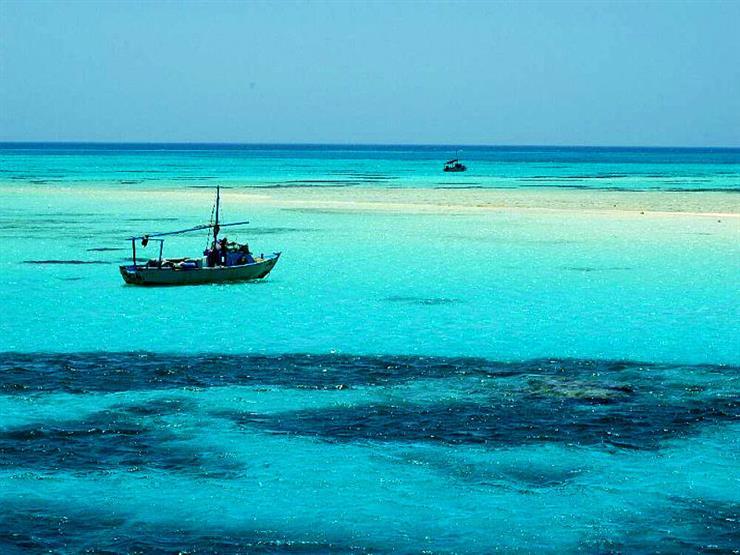 محميات البحر الأحمر تغير حرفة الصيد إلى الشانشولا حفاظًا على الثروة السمكية