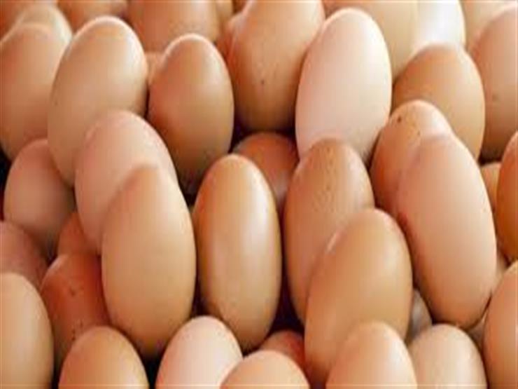 الزراعة: سحب البيض من التجار وعرضه على المواطنين بأسعار مخفضة