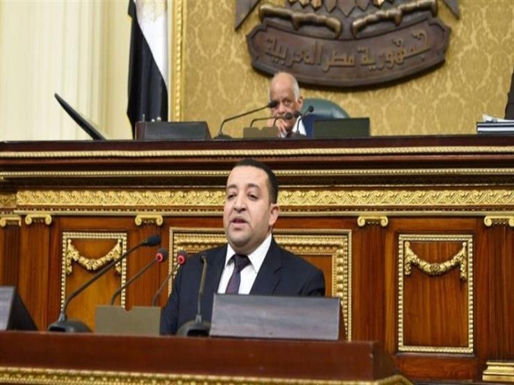 برلماني يتقدم بطلب إحاطة إلى وزير التنمية المحلية بشأن توزيع أراضي الوادي