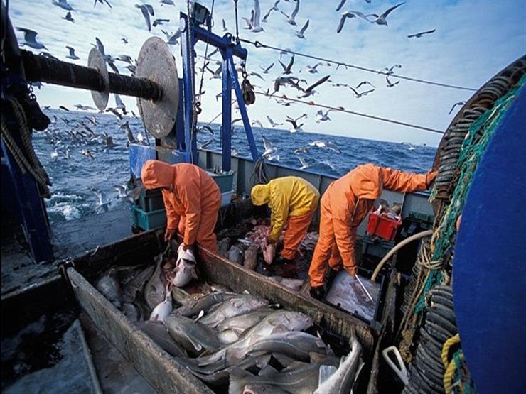 توقيع أول شراكة مصرية موريتانية لصيد وتصنيع الأسماك