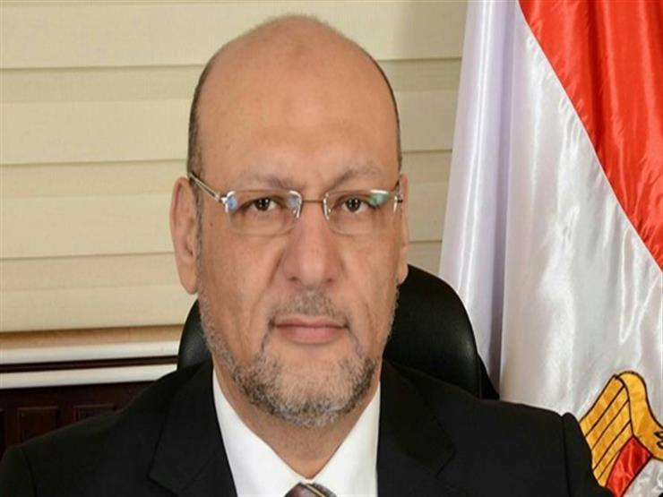 """رئيس """"المصريين"""": لقاء السيسي ورئيس الأمة الكويتي يعبر عن الأخوة العربية"""