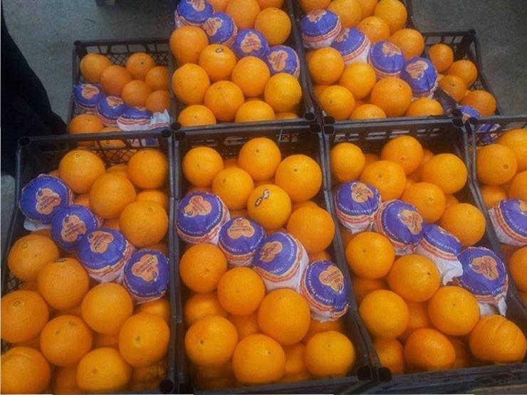 البرتقال المصري يضغط على الإسباني في الأسواق العالمية بعد ازدهار صادراته