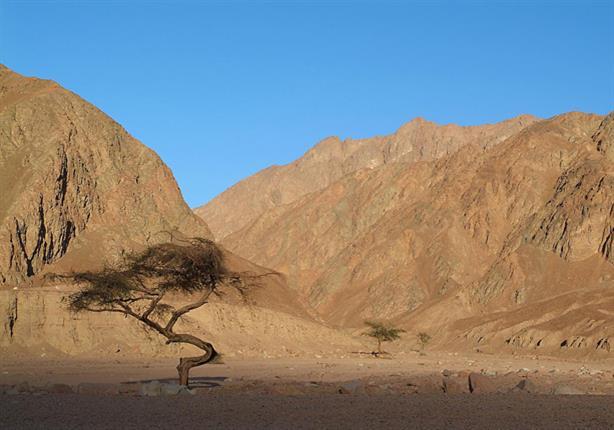 د.مصطفى محمود يتكلم عن صحراء سيناء وعجائبها الغريبة