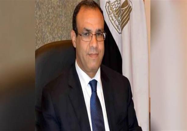 سفير مصر ببرلين: انتهاء الاستعدادات لإجراء استفتاء التعديلات الدستورية