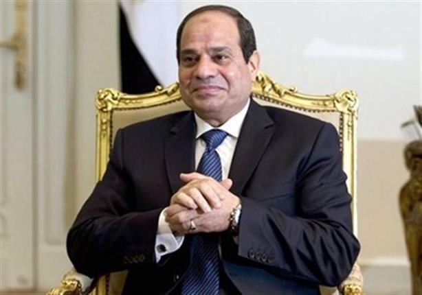 """السيسي لـ""""جمال عيد"""": إغلاق مكتبات """"الكرامة"""" إجراء قانوني"""