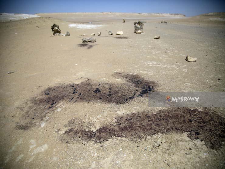 """""""سامح"""" أول شهيد على رمال المنيا.. حاول حماية الأتوبيس فباغتوه بـ 8 طلقات"""