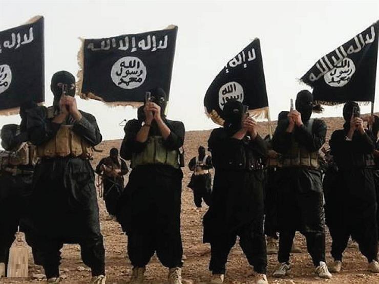 """صحيفة بريطانية: """"داعش"""" على حافة الانهيار"""