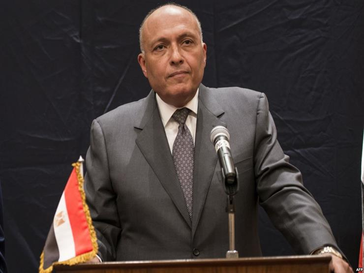 وزير الخارجية يبحث مع نظيره الإثيوبي في أديس أبابا تطورات سد النهضة