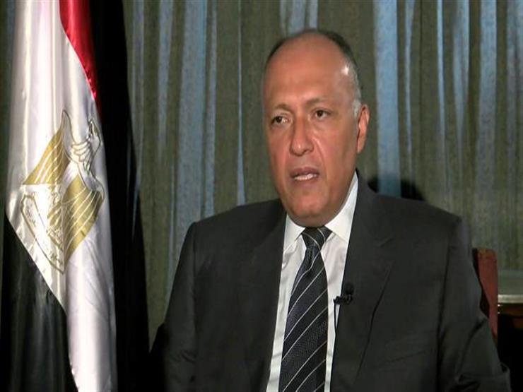 شكري يتوجه إلى الخرطوم لرئاسة وفد مصر في لجنة المشاورات السياسية