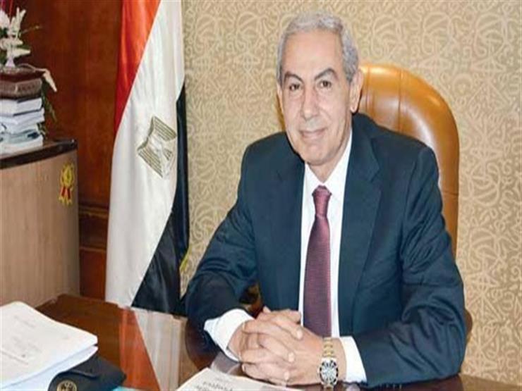 وزير التجارة: 4.8 مليار دولار حجم التجارة بين مصر و4 دول أفريقية