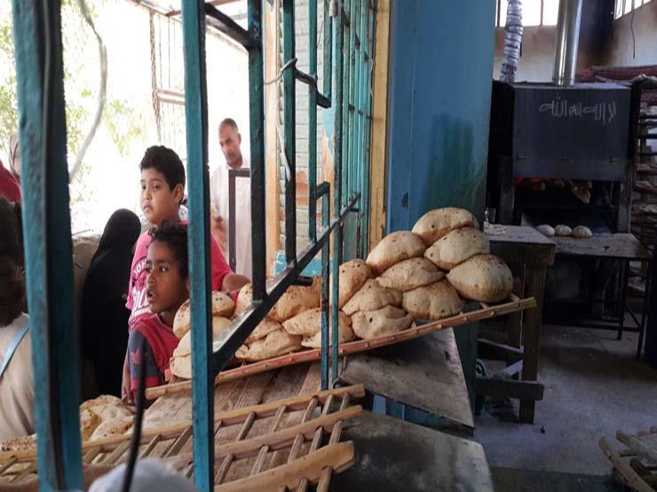 قبل التطبيق.. 10 معلومات عن منظومة الخبز الجديدة (فيديوجرافيك)