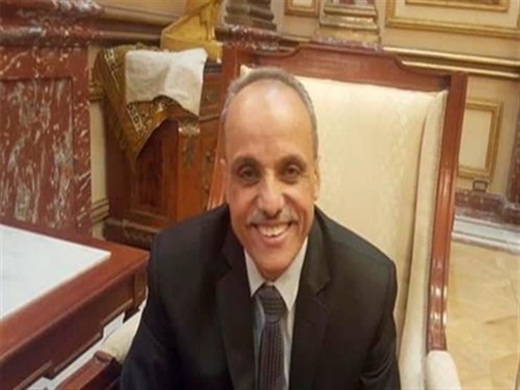 برلماني يطالب باستغلال مؤتمر الطيران العالمي في الترويج لمصر خارجيًا