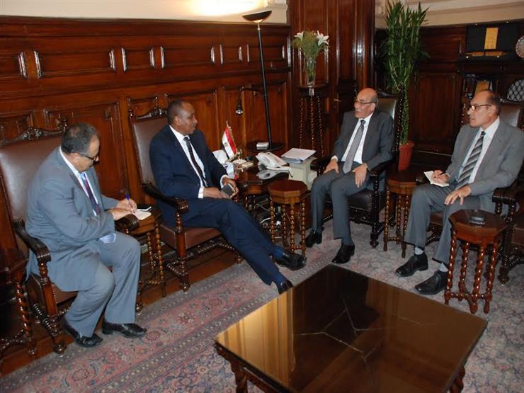 """وزير الزراعة يبحث مع مدير """"العربية للأمن الغذائي"""" في مصر"""