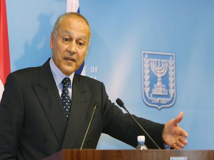أبو الغيط: سوريا المستقبل ينبغي أن تكون صاحبة سيادة حقيقة على أراضيها