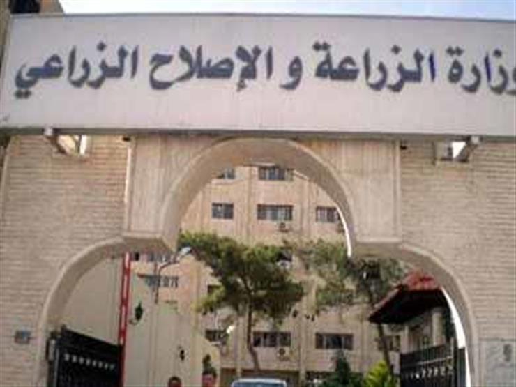 تعاون مصري أمريكي لإنتاج اللقاحات البيطرية