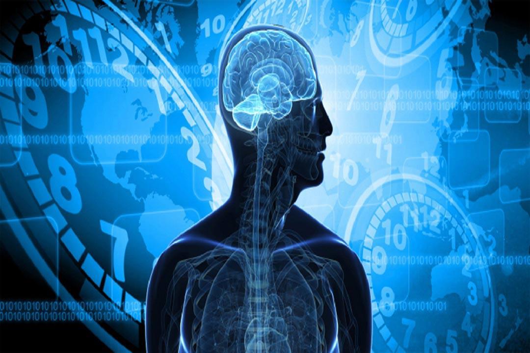 رئيس «وحدة النوم»: الساعة البيولوجية تتأثر باتجاه السفر.. (حوار)
