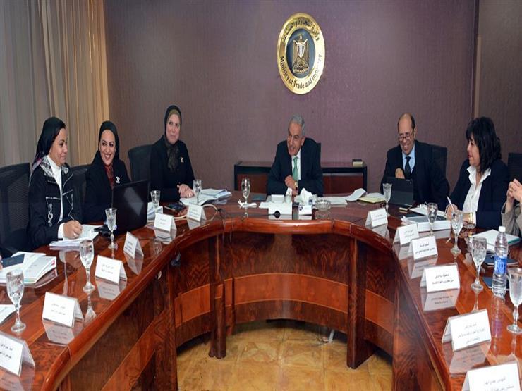 وزارة الصناعة تنتهي من إعداد مشروع قانون تنمية المشروعات الصغيرة