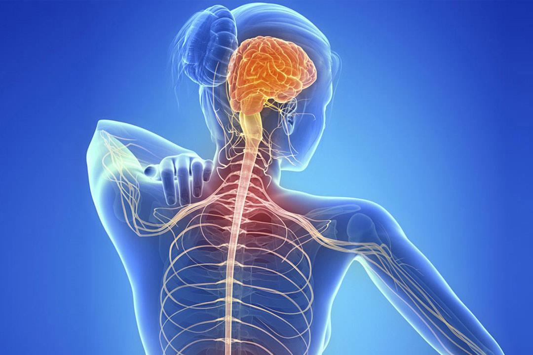 تصلب الأعصاب المتعدد يهدد الشباب.. من أعراضه «الزغللة» | الكونسلتو