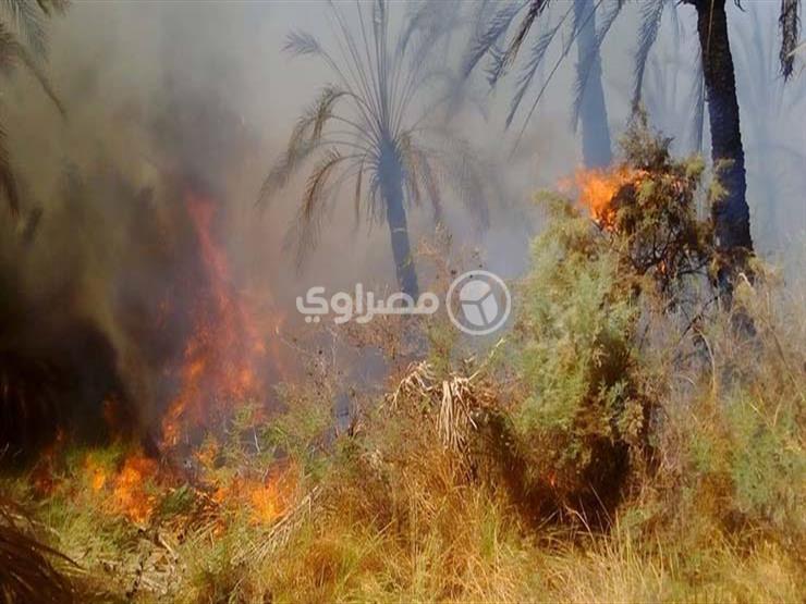 """حكاية """"عم فتحي"""" أحد متضرري حريق الراشدة"""
