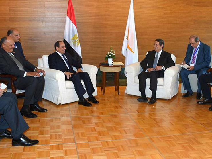 الرئيس السيسى يشيد بالتطور المستمر في العلاقات المصرية القبرصية