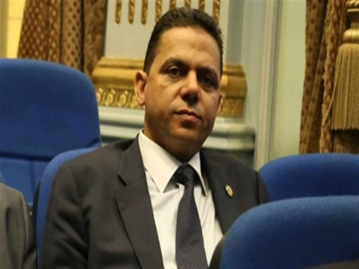 برلماني: قرار منع تداول الدواجن الحية يصب في صالح هذه الشركات