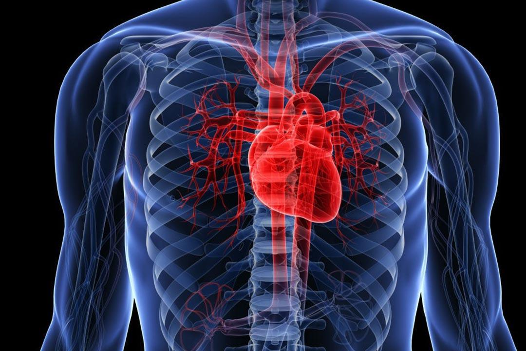 دراسة: الرجفان الأذيني يزيد مخاطر الإصابة بالخرف