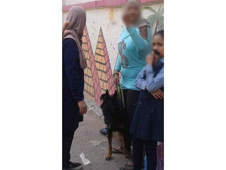 """أول تعليق من """"تعليم القاهرة"""" على واقعة إطلاق كلب حراسة على طالب"""