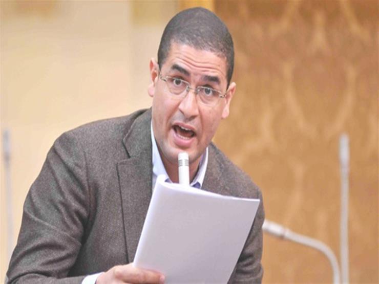 برلماني: النقاب عادة وليس من الدين.. وحظره مطلب ملح