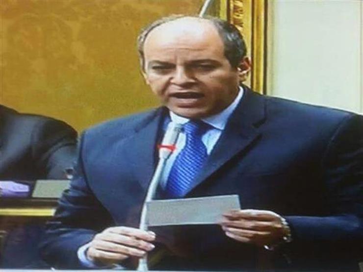 برلماني يشيد بوزيرة الهجرة لرفعها علم مصر ببرلمان أونتاريو الكندي