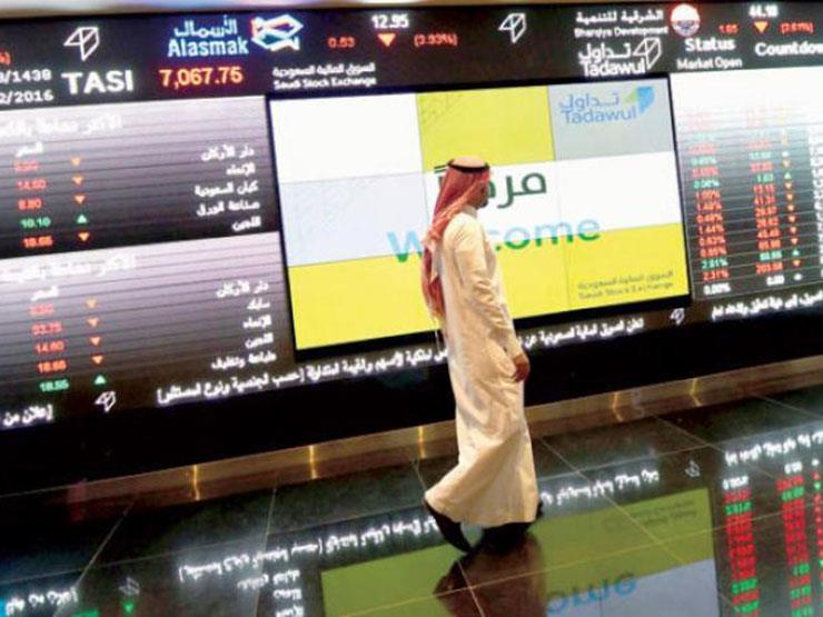 2e2cc24a7 رئيسة البورصة السعودية: 320 مؤسسة أجنبية مسجلة في سوق الأسهم | مصراوى
