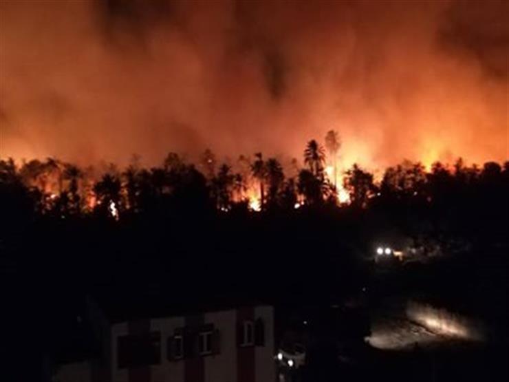 إصابة 7 مواطنين باختناق في حريق الراشدة بالوادي الجديد