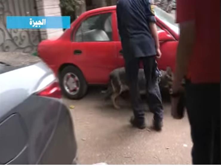 بالفيديو.. مكافحة المخدرات تشن حملات مكبرة بمحيط المدارس ...مصراوى