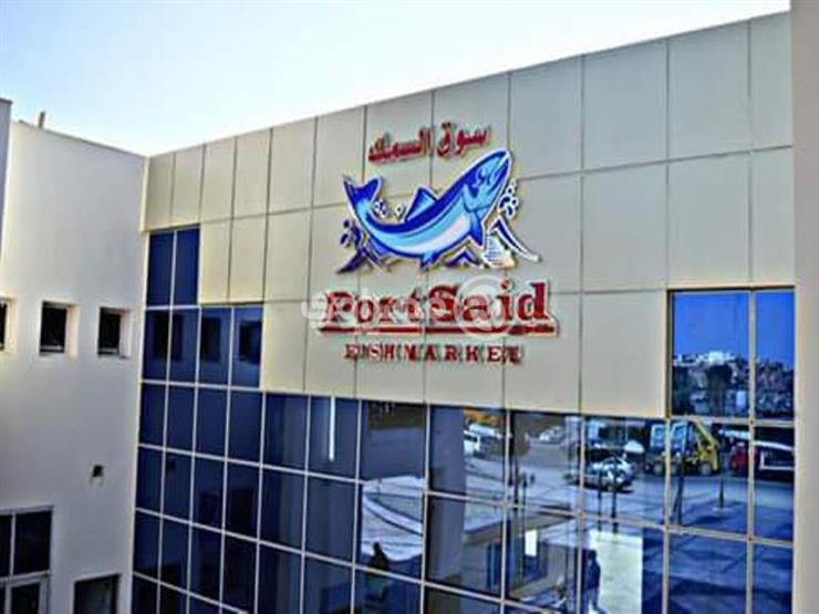 ed6ee46d1 بالصور- سوق أسماك عالمي في بورسعيد.. ومواطنون: