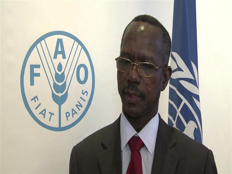 مساعد الرئيس السوداني: الشعب يقرر من يحكمه عبر الانتخابات في 2020