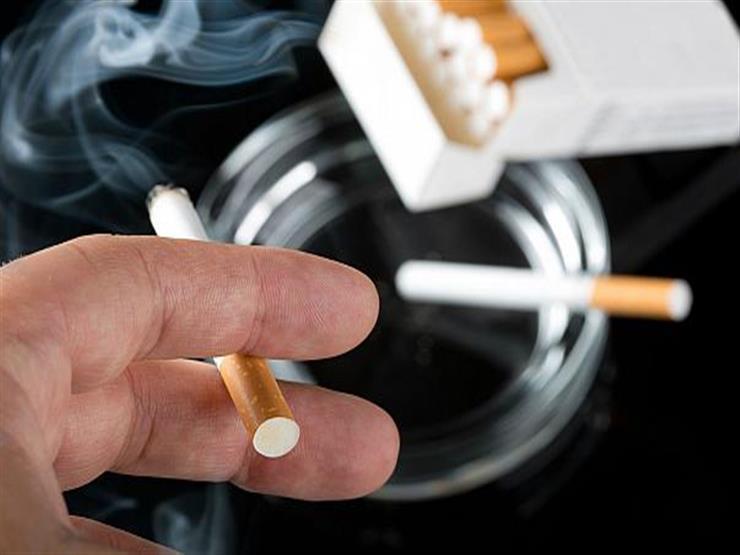 """""""خلوا التدخين في الآخر وعالجوا القمامة"""".. جدل بين برلماني ومسؤولة بـ""""الصحة"""" حول مكافحة التدخين"""