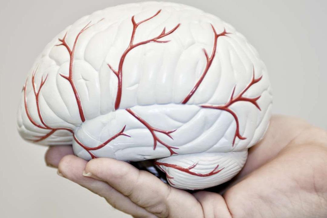 مادة كميائية تساعد على استئصال سرطان الدماغ بنجاح