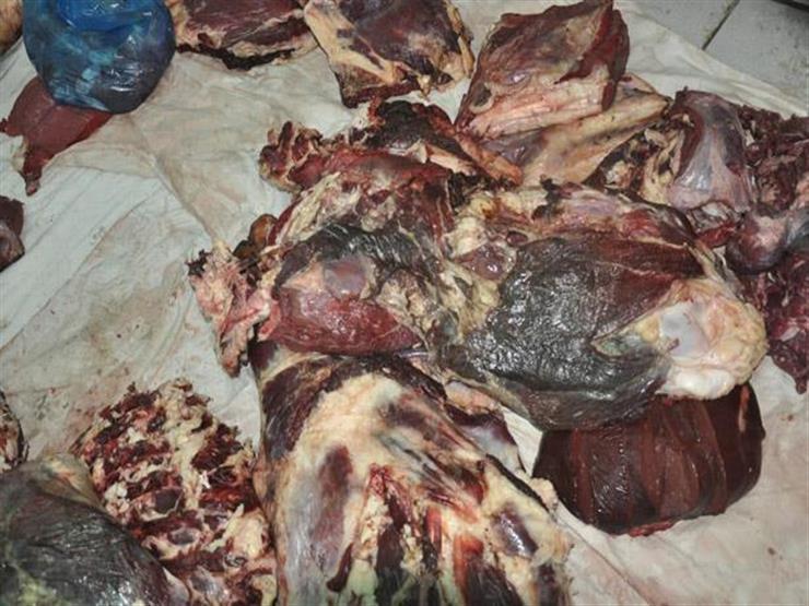 """مصادر بـ""""الزراعة"""": ضبط لحوم حمير في مطاعم شهيرة بالقاهرة والجيزة"""