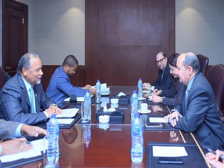 مصر وأنجولا تشكلان فريق عمل لتحديد مجالات التعاون وبدء تنفيذ مشروعات