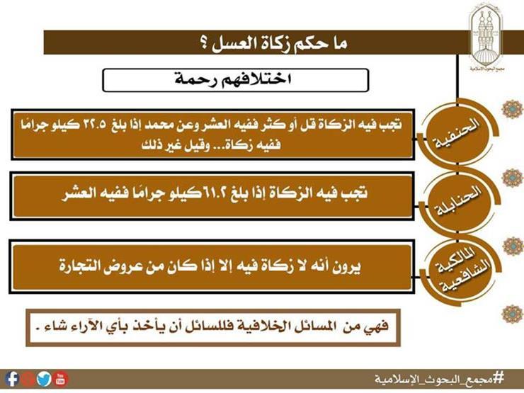 """ما حكم زكاة العسل؟.. """"البحوث الإسلامية"""" يجيب"""