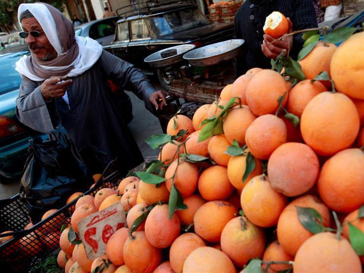 تقرير أمريكي يتوقع ارتفاع صادرات مصر من البرتقال خلال الموسم الجاري