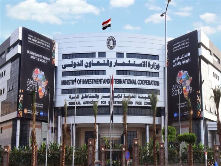 السعودية وسوريا الأكثر مساهمة في تأسيس الشركات بمصر خلال 11 شهرًا
