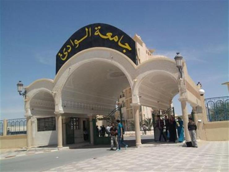 الأعلى للجامعات يوافق على إنشاء جامعة الأقصر الحكومية