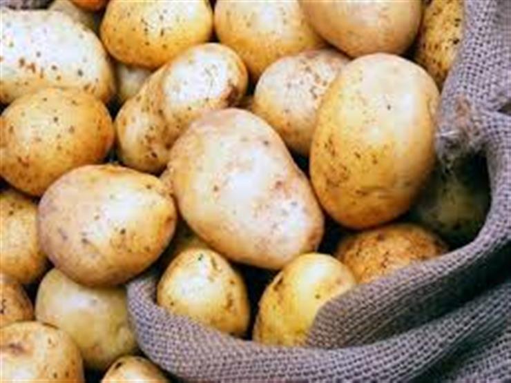 """متحدث """"الزراعة"""": أسعار البطاطس مرتبطة بالعرض والطلب"""