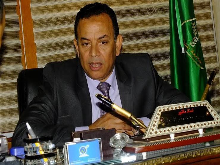 """رئيس جامعة المنوفية: القمر الصناعي """"إيجيبت سات A"""" خطوة في طريق التنمية المستدامة"""