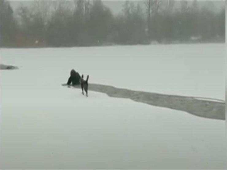 بالفيديو- كندية تعرض حياتها للخطر لإنقاذ كلب من التجمد