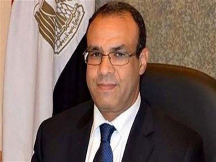 سفير مصر بألمانيا: نقل التصويت على الهواء مباشرة
