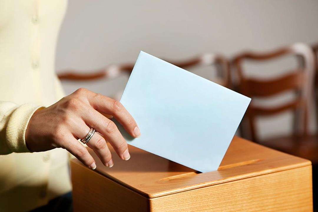 أسباب نفسية وراء تصويت المشاركين بالانتخابات.. بينها «نبرة الصوت»
